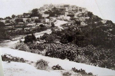 The former village of Iqrit sits atop a small hill surrounded by lush groves of various trees